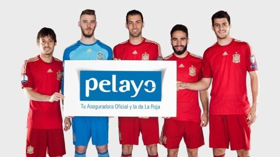 Pelayos-home